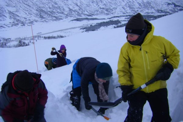 Course participants practice digging snowpits and conducting compression tests