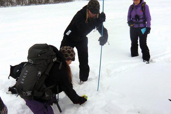 Avalanche Level 1 rescue
