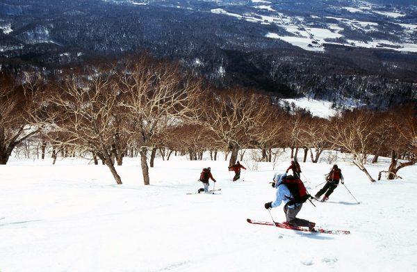 Telemark ski group