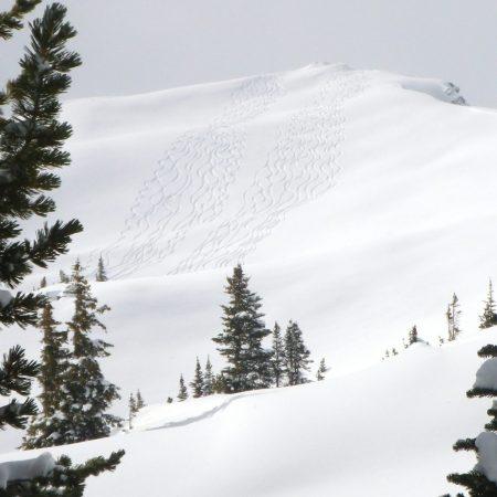 Vista Ski tracks