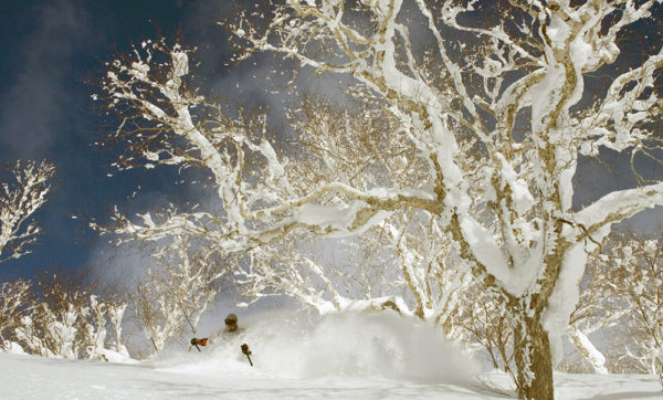 ski japan backcountry