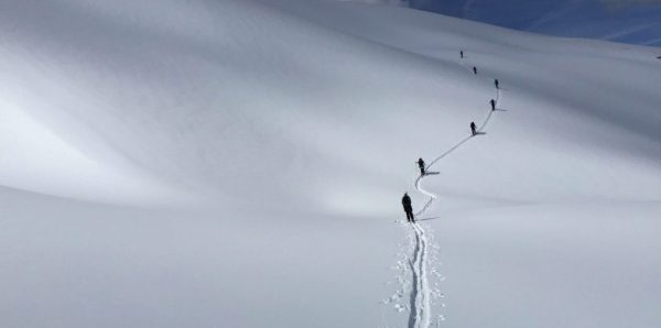 powder creek lodge wolverine bowl backcountry skiing