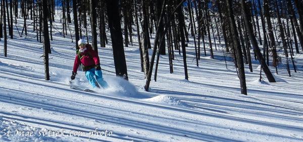 all women's backcountry ski trip in idaho skiing burned trees powder skis
