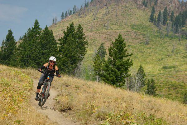 Sierra Mountain Biking