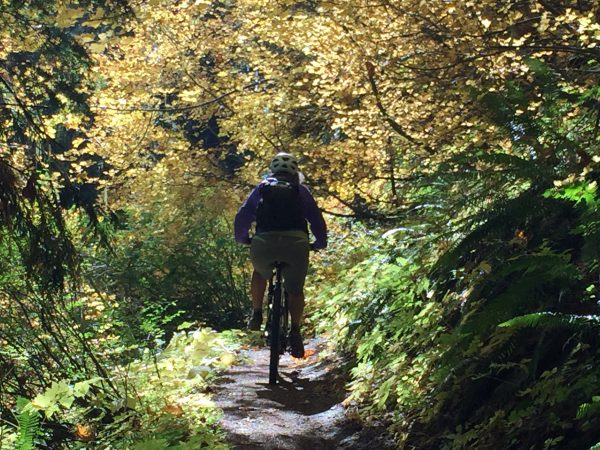 Mountain biking through the fall colors
