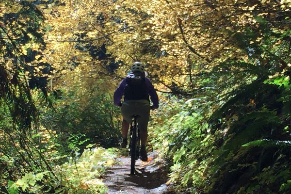 Mountain biking through the fall colors