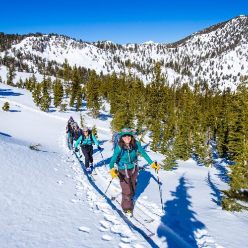 Avy Awareness and Beginner Backcountry Ski & Splitboard Tour – Truckee CA