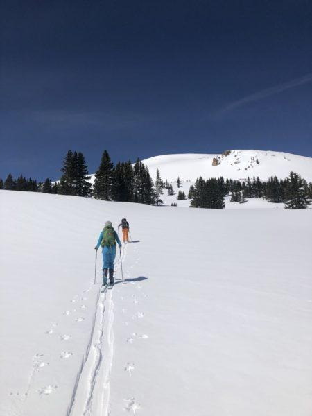 Beginner Backcountry Ski Tour